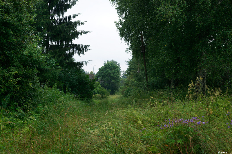 Toropetskiy Tract