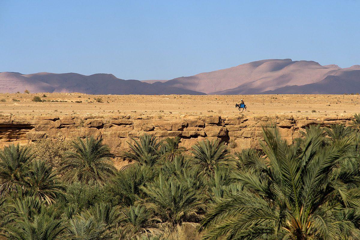 Между Сахарой и Атласом